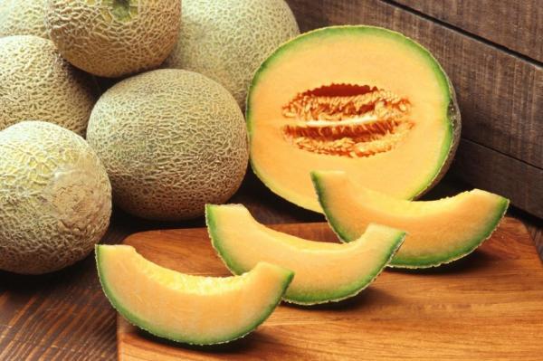 8 tipos de melones - Galia