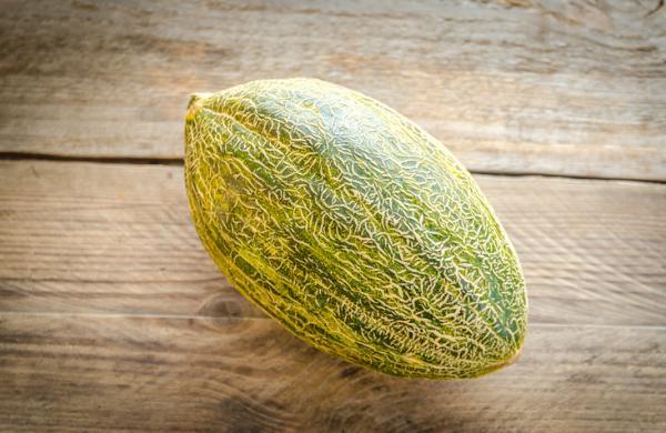 8 tipos de melones - Melón piel de sapo