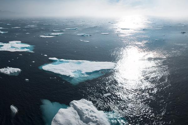 Deshielo en Groenlandia: causas y consecuencias