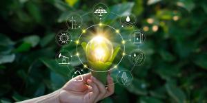 Qué es la ecología industrial con ejemplos