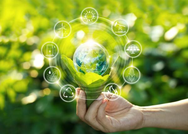 Biocapacidad: qué es y ejemplos - Qué es la biocapacidad