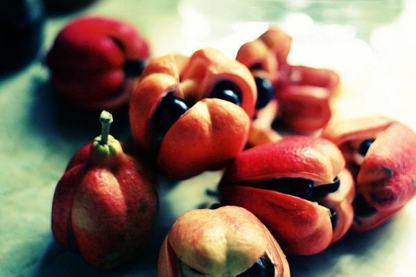 30 nombres de frutas tropicales raras - Ackee