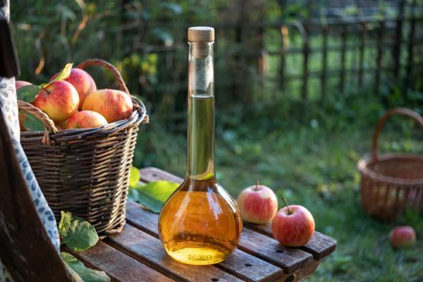 Vinagre para las plantas: beneficios y cómo utilizarlo - Propiedades del vinagre para las plantas y la salud