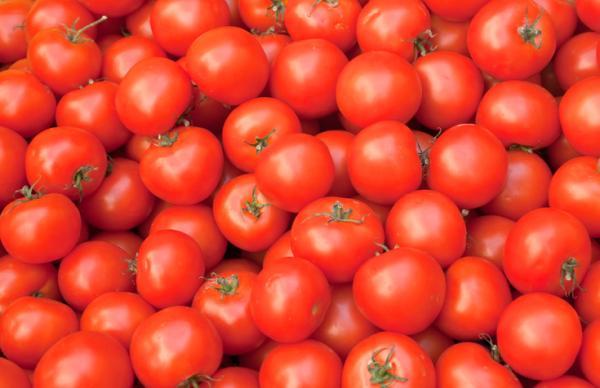 +30 tipos de tomates - Tomate redondo liso