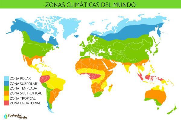 Tipos de clima en el mundo - Cuáles son los tipos de climas que hay en la Tierra