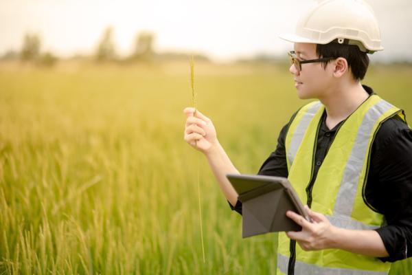 Qué es un estudio de impacto ambiental - Cómo hacer un estudio de impacto ambiental - ejemplo sencillo