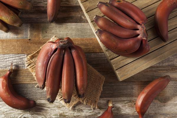 Tipos de plátanos - Plátano rojo
