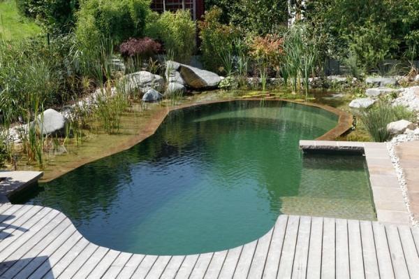 Piscinas ecológicas: cómo funcionan, ventajas e inconvenientes - Cómo se mantiene limpia una piscina ecológica