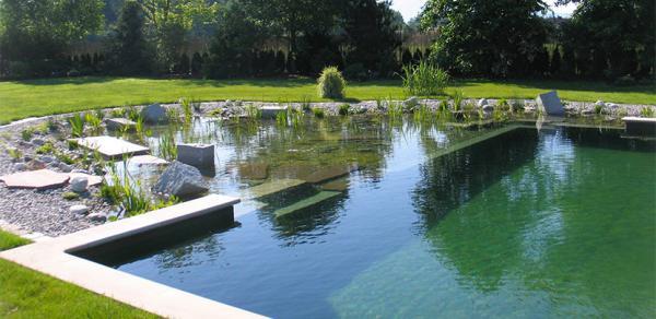 Piscinas ecológicas: cómo funcionan, ventajas e inconvenientes - Inconvenientes de contar con una piscina ecológica