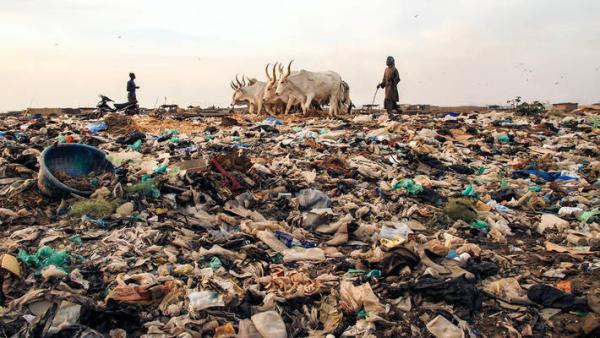Cuáles son los agentes contaminantes del suelo
