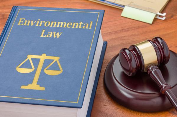 Cuáles son las leyes que protegen el medio ambiente - Las leyes de responsabilidad medioambiental
