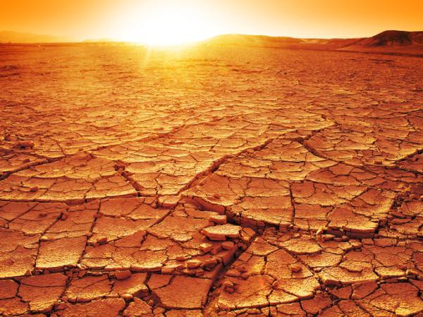 Desertización: qué es, causas y consecuencias - Cuáles son las causas de la desertización