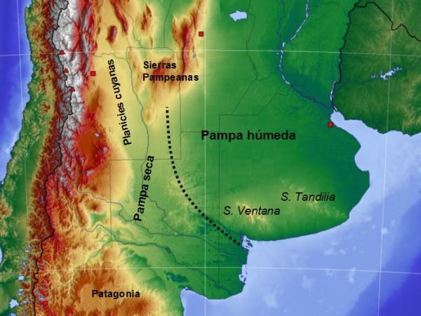 Región pampeana: características, flora y fauna - Características de la región pampeana