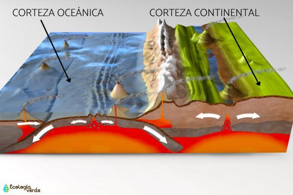 Corteza oceánica: qué es y características - Diferencia entre corteza oceánica y continental