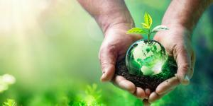Ecodiseño: qué es y ejemplos