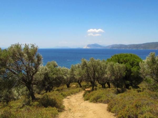 Qué es el clima templado mediterráneo
