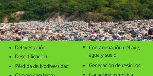 Qué es un problema ambiental y ejemplos
