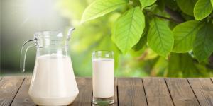 Leche para las plantas: beneficios y cómo usarla