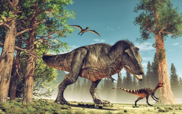 Dinosaurios Carnivoros Nombres Tipos Caracteristicas E Imagenes Qué son los dinosaurios, características principales, hábitat, tipos y extinción de los dinosaurios. dinosaurios carnivoros nombres tipos