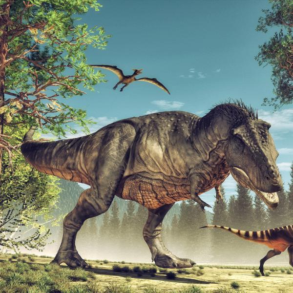 Dinosaurios Carnivoros Nombres Tipos Caracteristicas E Imagenes Encontre más imágenes de alta resolución en la colección de istock, que tiene un banco de ilustraciones e vectores de abrevadero disponible para descargar fácilmente. dinosaurios carnivoros nombres tipos