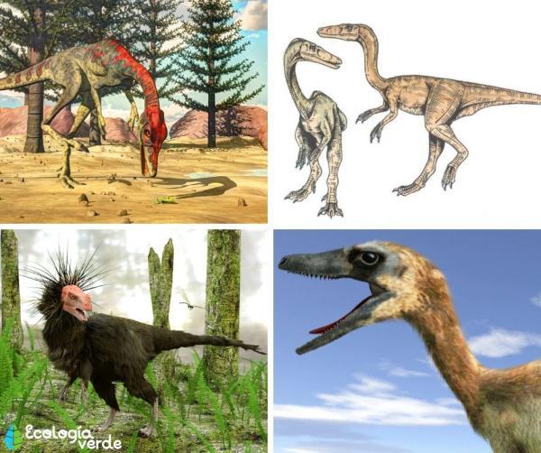Dinosaurios carnívoros: nombres, tipos, características e imágenes - Ejemplos de dinosaurios carnívoros pequeños - nombres e imágenes