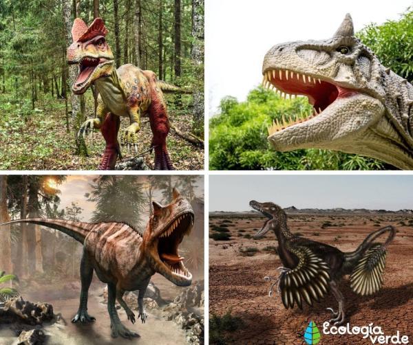 Dinosaurios carnívoros: nombres, tipos, características e imágenes - Nombres de dinosaurios carnívoros - lista de ejemplos