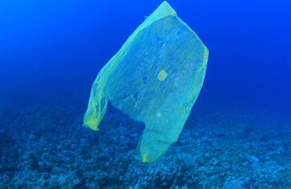 Tipos de contaminantes ambientales - Tipos de contaminantes ambientales según su degradabilidad