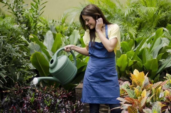 Cómo combatir el oídio con remedios caseros - Consejos para prevenir el oídio en las plantas
