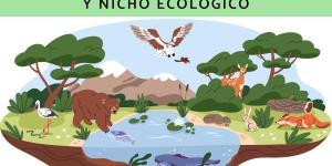 Diferencia entre hábitat y nicho ecológico con ejemplos