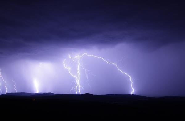 Por qué los árboles atraen los rayos - Qué hacer en caso de tormenta eléctrica