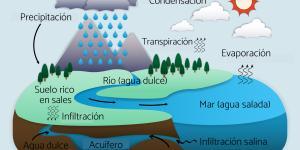 Salinización de los acuíferos: qué es y por qué se produce