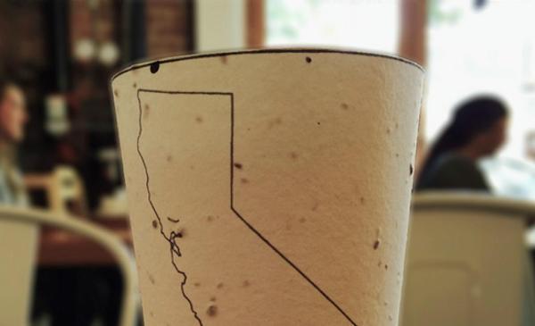 Los grandes inventos ecológicos de la Historia -  El vaso que se convierte en árbol