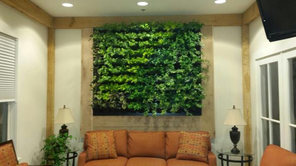 Los grandes inventos ecológicos de la Historia -  Paredes para purificar el aire