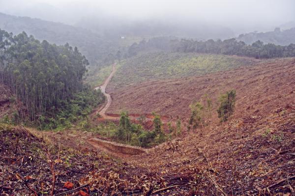 Tipos de erosión - Erosión antrópica