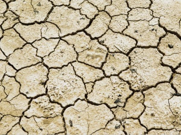 Tipos de erosión - Erosión del suelo