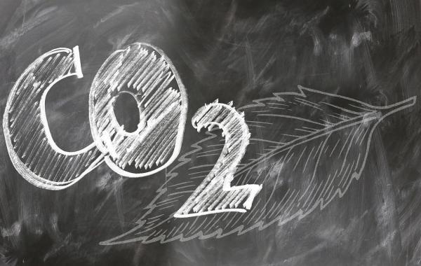 Qué son los mercados de carbono: tipos y cómo funcionan