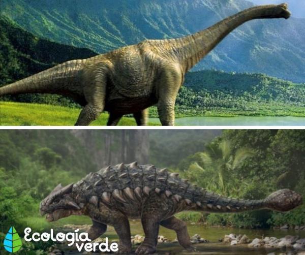 Dinosaurios Herbivoros Nombres Tipos Caracteristicas E Imagenes Antropología · 1 decade ago. dinosaurios herbivoros nombres tipos