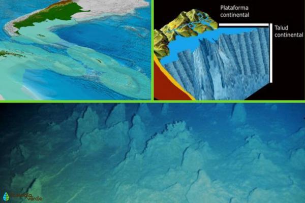 Tipos de relieve y sus características - Tipos de relieve oceánico