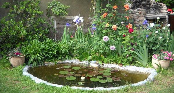 Convierte un jardín en un paraíso de biodiversidad - ¿Por qué poner un estanque?