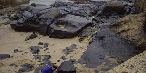 Impacto ambiental del petróleo y el gas natural