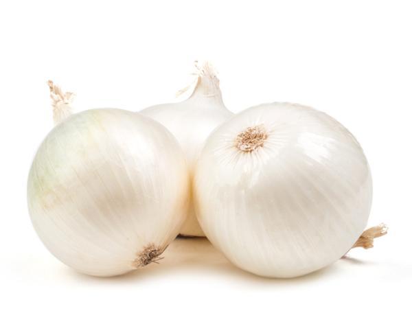 Tipos de cebolla - Cebolla blanca