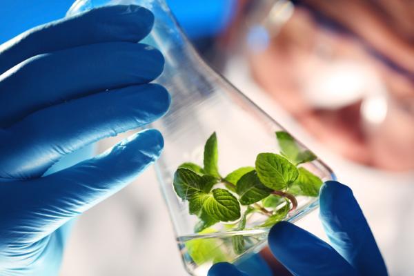 Qué es la biotecnología y para qué sirve