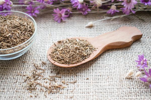 60 plantas medicinales del Perú y para qué sirven - Valeriana, ¿para qué sirve?