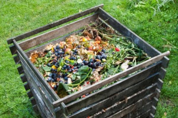 Cómo hacer compost casero - Cómo hacer compost casero paso a paso