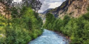 Ecosistemas lóticos: qué son y ejemplos