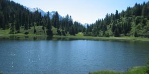 Por qué son importantes los ríos y lagos