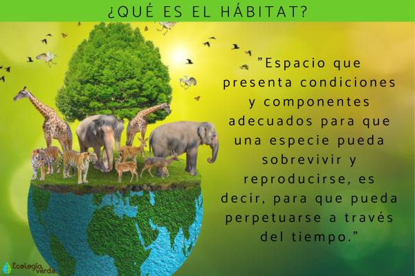 Qué es el hábitat