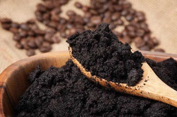 Maneras de utilizar los restos de café en el jardín - Alimentar a las lombrices del compost