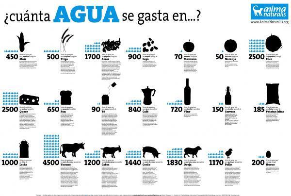 Indicadores ambientales: qué son, tipos y ejemplos - Huella hídrica