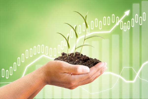 Indicadores ambientales: qué son, tipos y ejemplos - Indicadores ambientales: características